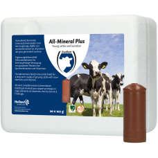 ALL-MINERAL PLUS 1 ST