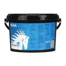 BCAA PAARD 1000 GRAM
